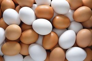 срок хранения яйца в холодильнике